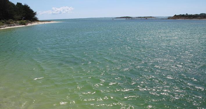 Das Meer des Glücks, des Vertrauens und der Liebe