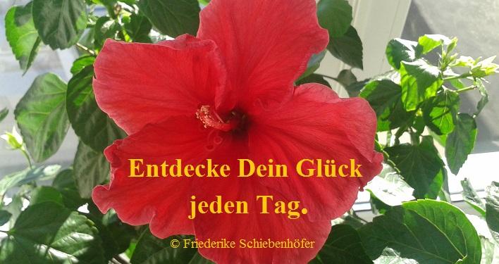 Glueck-Erlebnistag in Hannover