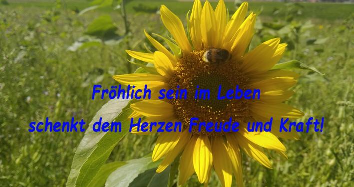 Fröhlich sein mit dem Märchen vom Sommer- und Wintrgarten